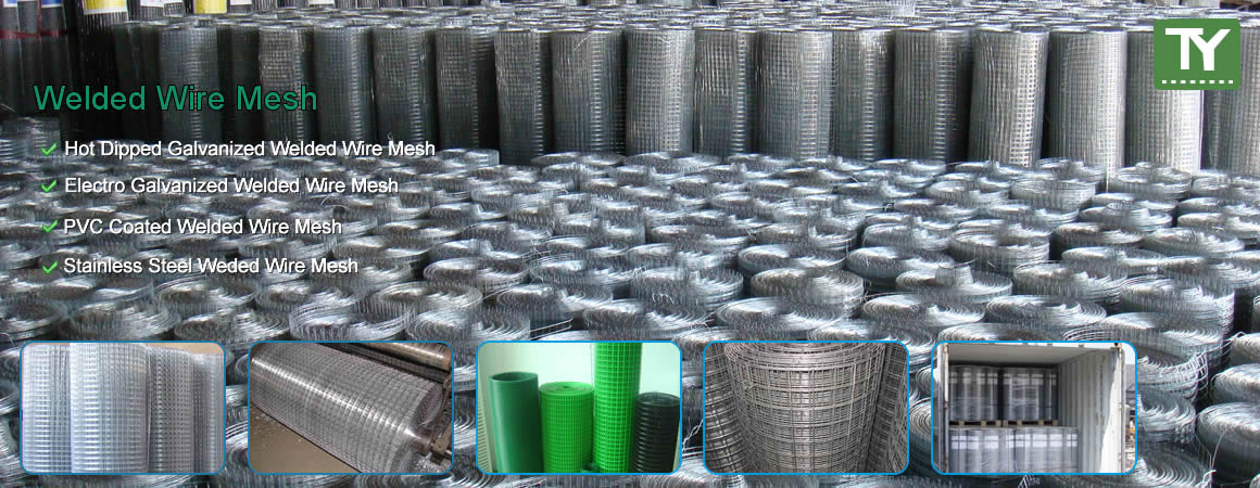 Anping Tianyu Wire Mesh Co., Ltd.